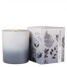 Perfumedhome candle by Designers Guild